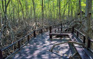 Pranburi Forest Park