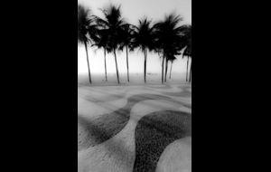 Waves ... Rio 2015