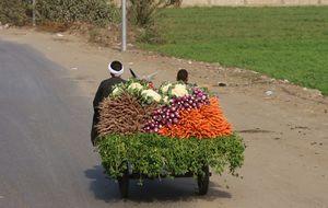 Grönsaker på väg till torget