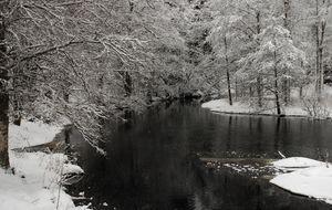 Stilla flyter ån.