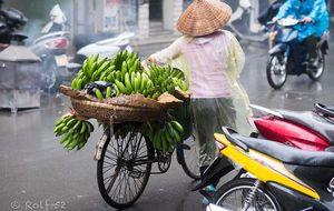 Bananhoj i Hanoi