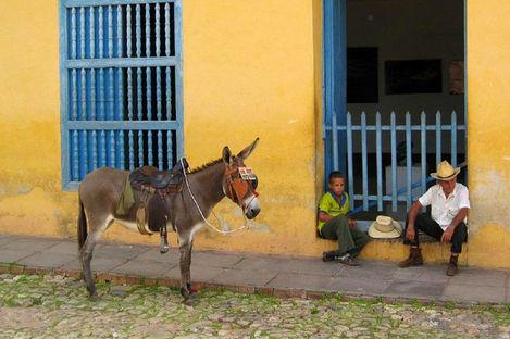 3 charmiga måsten på Kuba