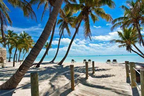 Roadtrip i exotiska Florida