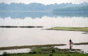 Risfält mellan Hanoi och Lao Cai