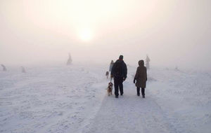 Det nyåret med panikartat lite snö