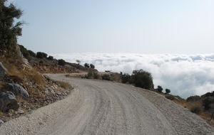 Hortalas berg