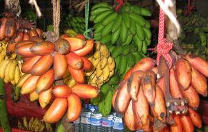 Bananer i olika färger