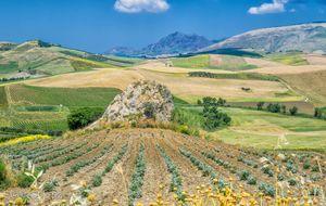 Corleones böljande odlingslandskap