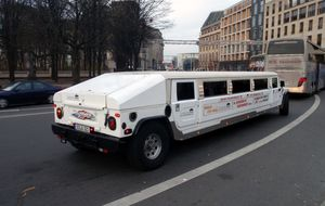 Sightseeing limo!