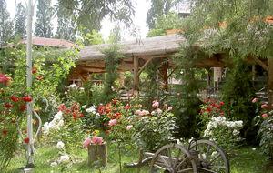 Hotellträdgård