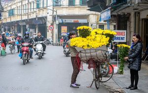 Blomsterhandel på hjul i Hanoi