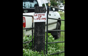Beware of wife and dog