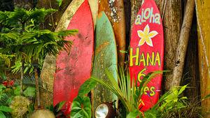 Guide till Hawaiis tropiska öar och äventyr