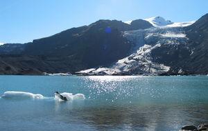 Glaciär på Island