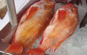 Vad heter fisken?
