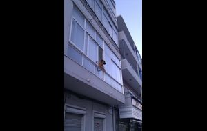Lustig hund i Lissabon!