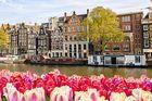 Holland Weekend - Blomstrande helgupplevelser