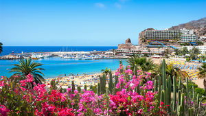 Allt du behöver veta om Kanarieöarnas mest populära ö