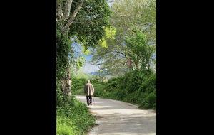 Bilden är tagen på Nisi - en liten bebodd ö i sjön Pamvotis.  Man kan gå, jogga, cykla m.m. på den fina vägen som går runt ön...