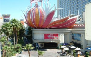 Flamingo Hotel & Casino