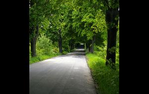 Smal väg i Polen
