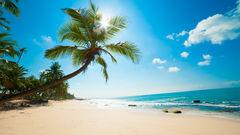 Sri Lankas rena och kritvita stränder.