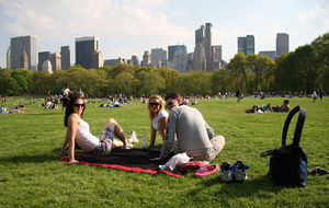 Picknick på Sheep Meadow i Cnetral Park