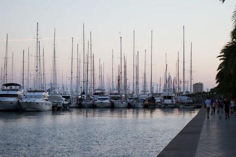 Mallorca – med stort sällskap
