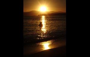 Kärlek i solnedgangen
