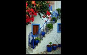 Grekmys från Skiathos