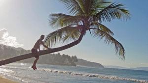 En karibisk ö som passar alla