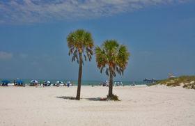 Clearwater Beach bjuder på flest antal soldagar i världen!