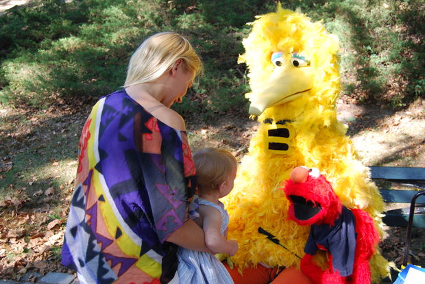 Central park. big bird och elmo från sesame street - bilder new york