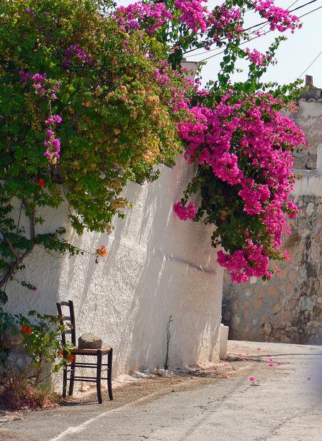Morgonpromenad. - Bilder Agistri, Grekland
