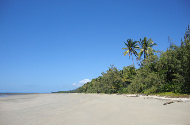 how to get to daintree rainforest from melbourne