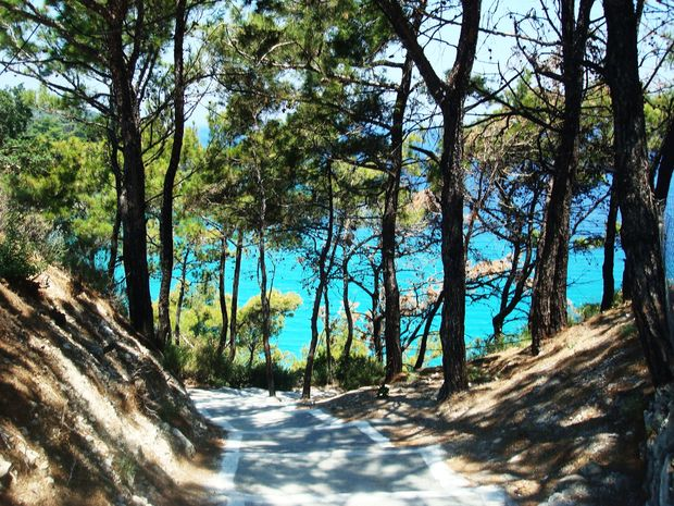 Vägen ner till nudiststranden Tsamadou! - Bilder Kokkari, Samos, Grekland