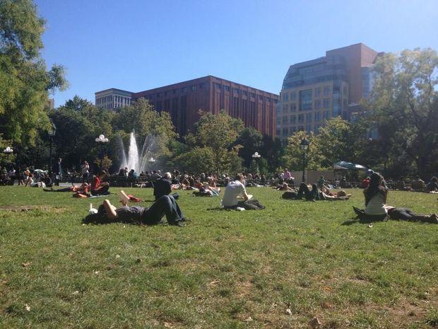 Startsida › bilder › usa › new york › washington square park