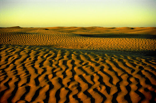 Solnedgång i Sahara