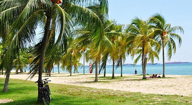 Storstad och strand i ett, här på East Coast.