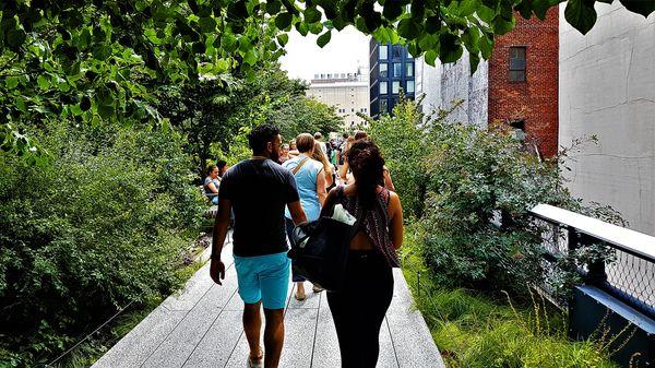 hastighet dating Sydney 2015 hjälp med att göra en dejtingprofil