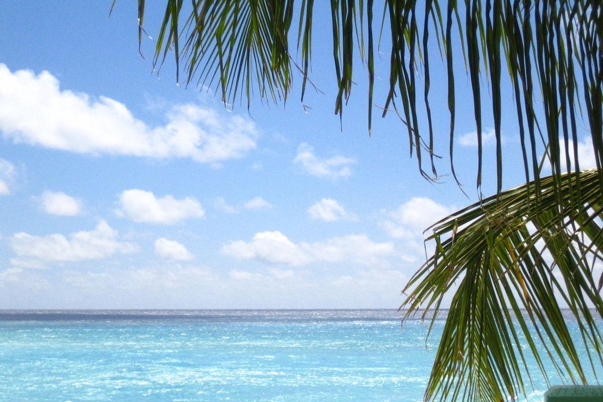 Caribiska havet vid hotellet Blue Orchids