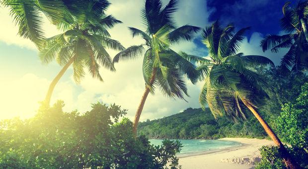 Seychellerna, mer än bara fantastiska stränder...men vilka stränder sen!!