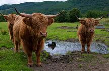 Skottland - En genuin höglandsresa