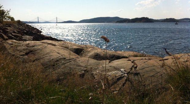 Sverige lockar med vacker natur, kultur och storstad.